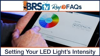 PAR & Reef Tank Lighting Schedules: What's the ideal program for LED aquarium lighting? - BRStv Reef FAQs