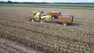 NTR 2018 Harvest