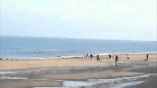 preview picture of video 'whitley bay'