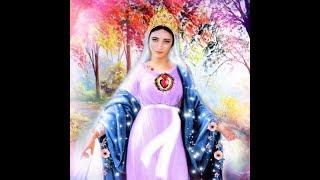 31.03.2019 | Vídeo - Mensagem de Nossa Senhora Rainha e Mensageira da Paz ao vidente Marcos Tadeu Te