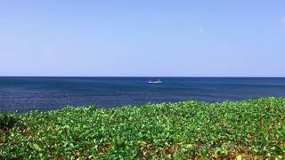 Rural Fishing Beach Ecology In The Dry Season At Seririt Village Buleleng North Bali Indonesia
