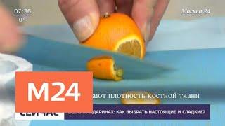 Как выбрать мандарины - Москва 24