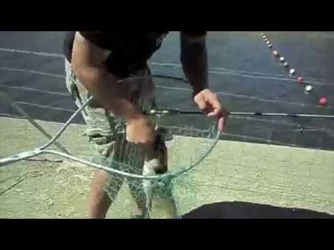 """""""Fishing For Catfish At The California Aqueduct!"""" by Verdugoadventures"""