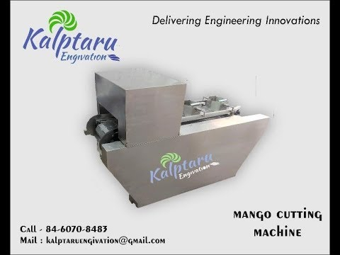 Raw Mango Cutting Machine at Best Price in India