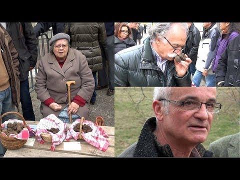 Les gouttes le marteau tora le prix dans les pharmacies magnitogorska
