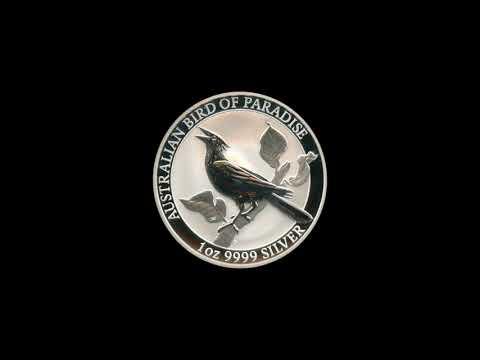 Video -  Australian Bird of Paradise - 2019
