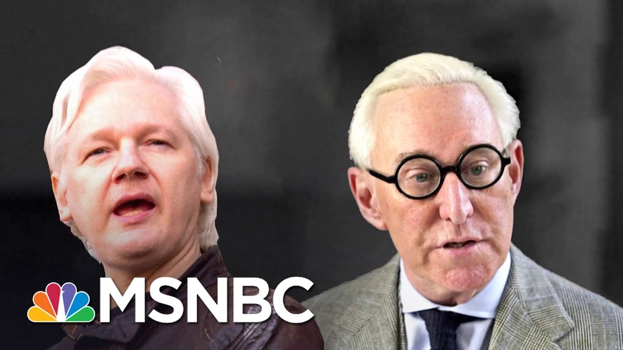 WSJ: Robert Mueller Probing Roger Stone's Ties To Wikileaks' Julian Assange | The 11th Hour | MSNBC thumbnail