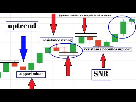 Understanding brokers options trading forex understanding brokers options trading forex