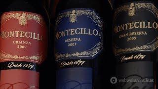 Weinschule Folge 62: Tempranillo