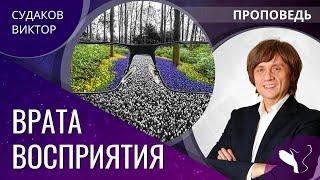 Виктор Судаков - Врата восприятия