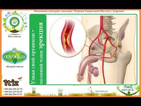 Антибиотики для гиперплазия предстательной железы