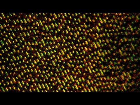 CD-ROM Under The Microscope [2000x] Mp3