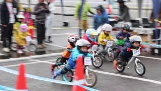 2017.1.83歳予選ランニングバイク選手権in姫路セントラルパーク