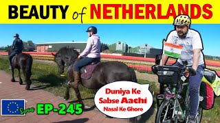 क्या सच मैं यूरोप  इतना खूबसूरत है Holland Cycling Tour,  Cycle Baba Ep.245