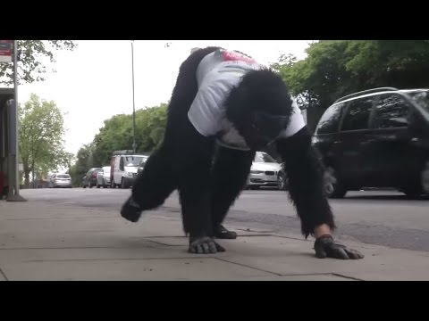 """London Marathon: Darum krabbelt der """"Gorilla-Mann"""" die Strecke entlang"""