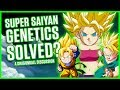SUPER SAIYAN GENETICS  SOLVED  A Dragonball Discussion