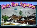 Download Lagu Ikan Hias Aquarium  Pilihan Mp3 Free