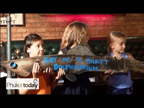 Dolphin captivity discussed at the Irish Times in Patong