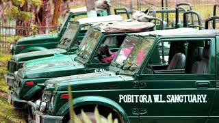 preview picture of video 'Pobitora || Wildlife Sanctuary || Morigaon || Assam || India'