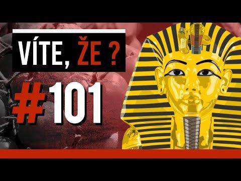 #101 ● VÍTE, ŽE...?