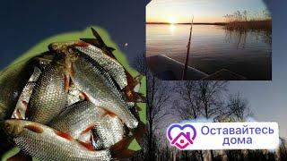 Рыбалка в октябре на чудском озере