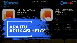 Apa Itu Aplikasi Helo?, Ternyata Dikembangkan oleh Perusahaan Induk TikTok