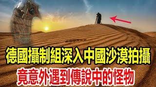 德國攝制組深入中國沙漠拍攝,竟意外遇到傳說中的怪物,隨後壹幕發生眾人四處逃竄!