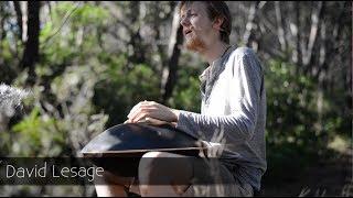 Endro improvisation - David Lesage - Handpan Festival - Forest