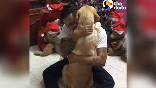 Dog Knows Exactly How To Comfort His Dad | The Dodo