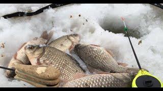 Озеро дубровное курганская область рыбалка отчеты 2020