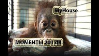 ЛУЧШИЕ CUBE ПРИКОЛЫ 2017!!! СМЕШНЫЕ МОМЕНТЫ!!! MyHouse #152 ЯНВАРЬ 2018