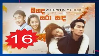 Autumn In My Heart Episode 16 Subtitle Indonesia