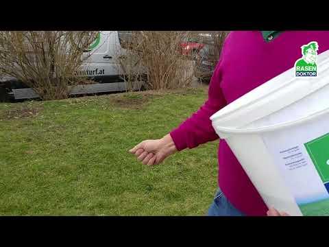 👉Rasen einfach düngen ohne Düngerstreuer 🌱 Rasen-Tipps vom Profi 💚