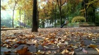 Bheegi Bheegi [Full Song] Gangster- A Love Story - YouTube
