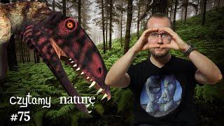 Czytamy naturę #75 | Pterozaury górą i dołem – Nowe fale mózgowe – Ile dzisiaj zrobisz kilometrów?