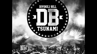 Divokej Bill - Tsunami (official video)