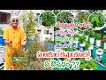Health benefits of rare medicinal plants || grow on terrace garden || Dr.Khader Vali