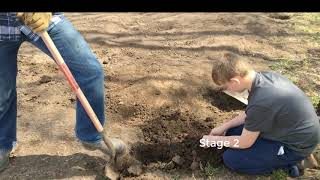 How to Start a Garden (Wisconsin 2020):  3 steps to prepare your soil before you plant this spring!
