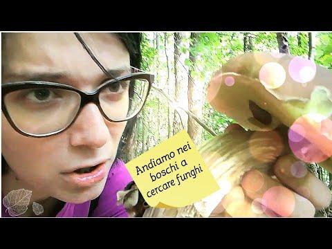 Che guarire un fungo che sta a donne incinte