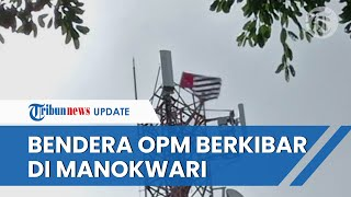 Geger Bendera Bintang Kejora Berkibar di Tower Telkomsel di Pusat Kota Manokwari, Polisi Buru Pelaku