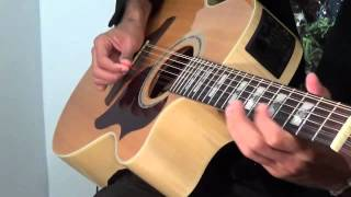 Pachelbels Canon in D Acoustic 12-String Guitar Performance