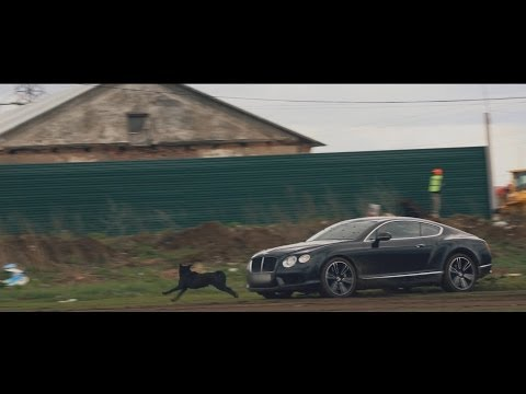 Bentley Continental GT - тест-драйв