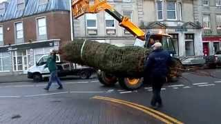 preview picture of video 'Installation of Oakham's Replacement Christmas Tree, Donated by Rutland Garden Centre'