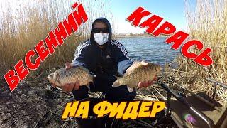 Рыбалка как ловится карась на фидер