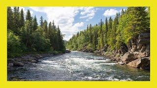 Zvuk vode - potok