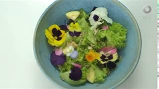 Tu cocina - Menú de flores