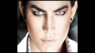 My obsession - Adam Lambert