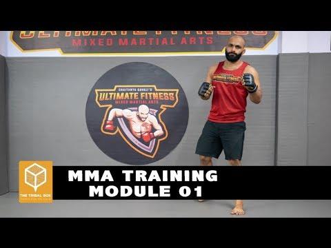 Beginner's MMA Crash Course: Lesson 1 Basics
