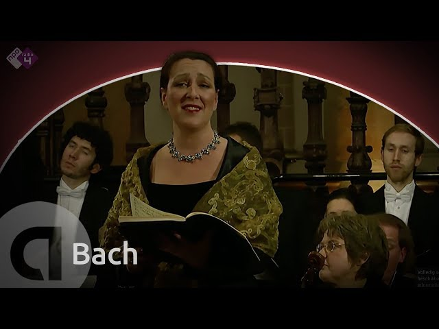 Bach: Weihnachtsoratorium, BWV 248 (Cantate No. 1)