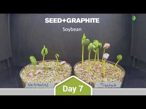 Soybean Timelapse